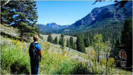 PIcture Yellowstone hikes for kids